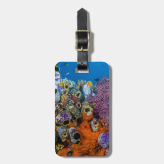 Coral Reef and Fish Luggage Tag