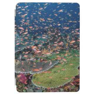 Coral Reef and Fish Schools iPad Air Cover