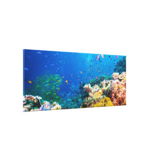 Coral Reef And Tropical Fish Canvas Print