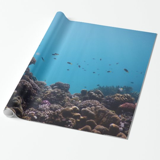 Coral Reef and Tropical Fish of Pacific Ocean