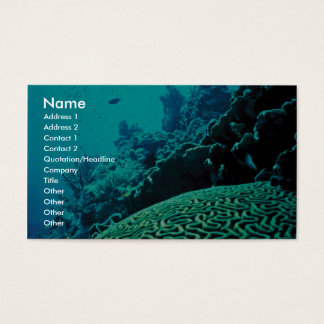 Coral Reef Business Card