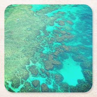 Coral reef coaster