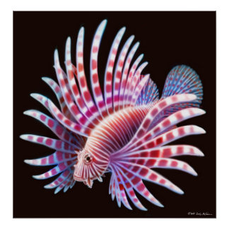 Coral Reef Lionfish Poster