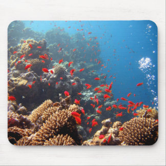 Coral Reef Mouse Mat