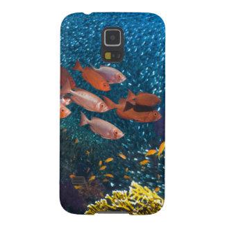 Coral Reef Scenery | Bigeye Or Goggle-Eye Galaxy S5 Case