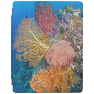 Coral Reef Scenic iPad Cover