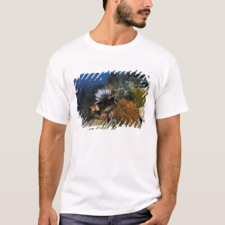 Coral reef. T-Shirt