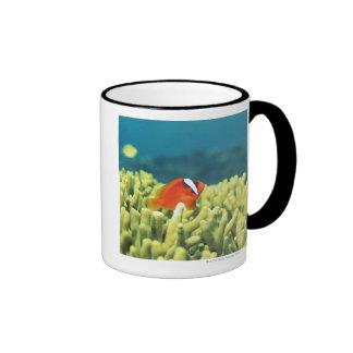 Coral reef teeming with tropical fish ringer mug