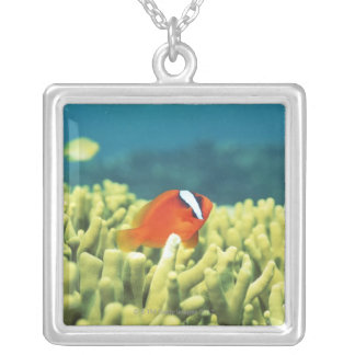 Coral reef teeming with tropical fish silver plated necklace