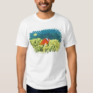 Coral reef teeming with tropical fish tshirts