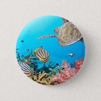 Coral Reef Turtle Naturescape 6 Cm Round Badge