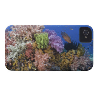 Coral reef, uderwater view Case-Mate iPhone 4 case