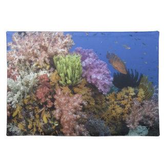 Coral reef, uderwater view placemat