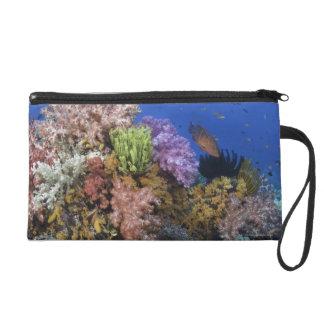 Coral reef, uderwater view wristlet
