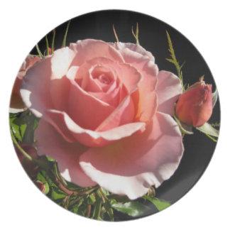 Coral Rose Decorative Plate