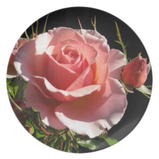 Coral Rose Decorative Plate