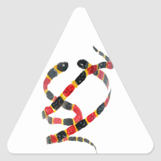 Coral Snakes Reptile Animal Art Triangle Sticker
