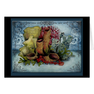 Z Coral Card Coral Anniversa...