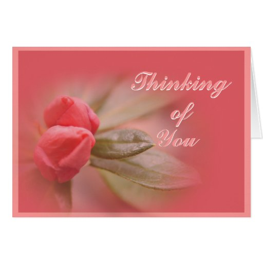 CoralAzaleaBuds- customize as needed Greeting Card