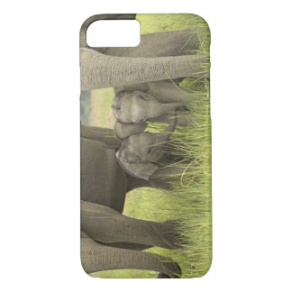 Corbett National Park, Uttaranchal, India. iPhone 8/7 Case
