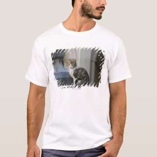 cordoba, argentina T-Shirt