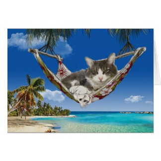 Corduroy in the Caribbean, cat in hammock card