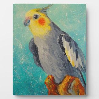 Corella parrot plaque