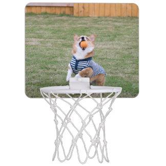 corgi basketball hoop
