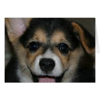 Corgi Dog Greeting Card