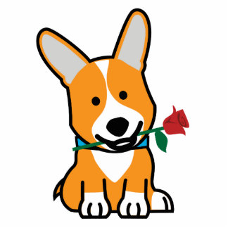 Corgi dog puppy Pembroke Welsh Valentine Rose Photo Sculpture Magnet