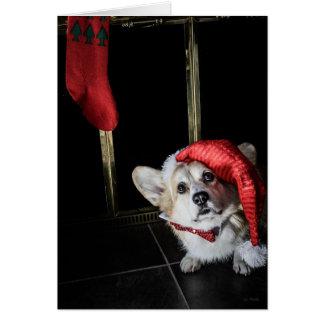 Corgi Elf Looking for Santa Christmas card