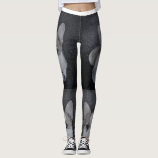 Corgi Leggins Leggings