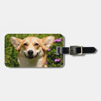 CORGi Luggage Tag