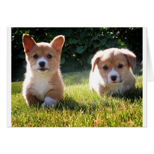 Corgi ( Pembroke ) Puppy Dog Blank Note