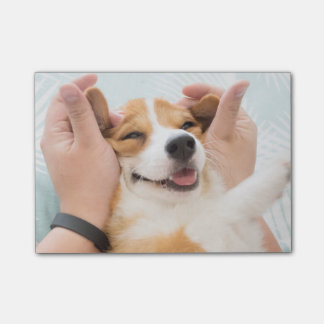 corgi post it post-it notes