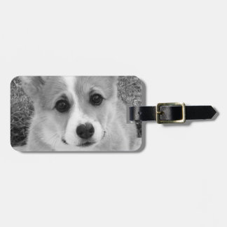 Corgi Puppy Bag Tag