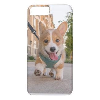 corgi puppy case