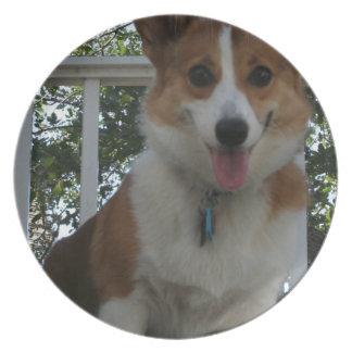 Corgi Puppy Plate