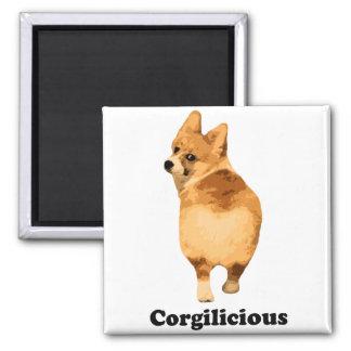 Corgilious Magnet