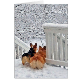 Corgis in the Snow Card