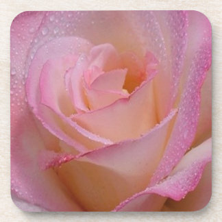 Cork Coaster Set Beautiful Pink Rose