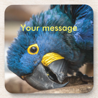 Cork coaster with cute Hyacinth Macaw parrot