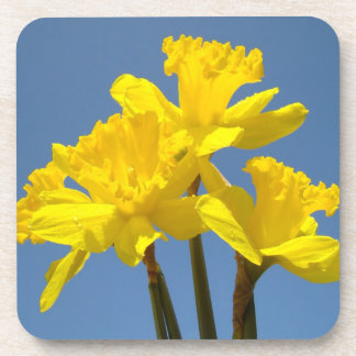 Cork Coasters nature Daffodil Flowers Daffodils