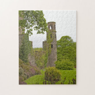 Cork, Ireland. The infamous Blarney Castle 2 Jigsaw Puzzle
