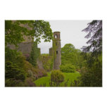 Cork, Ireland. The infamous Blarney Castle 2 Poster
