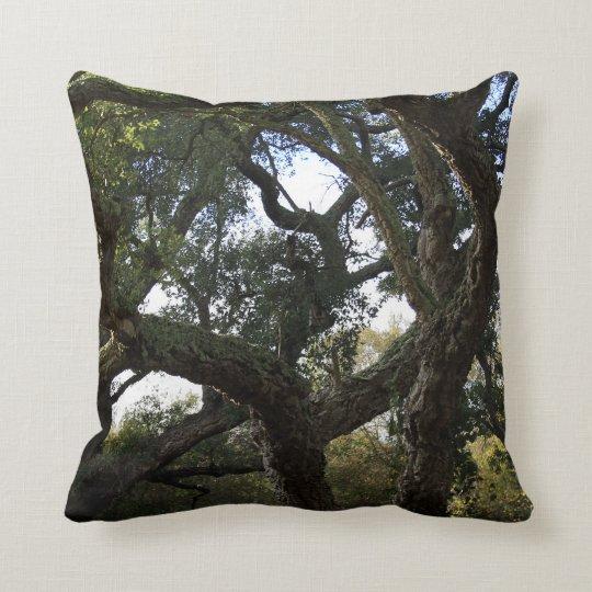 Cork oak or tree of the cork, elegant