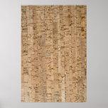 Cork-oak pattern