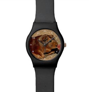 Corkboard Look Guinea Pig Watch