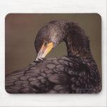 Cormorant Mousemats