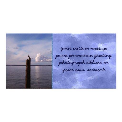 Cormorant On Pole Photo Greeting Card